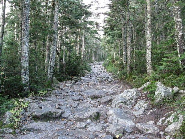 Tuckerman trail
